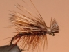 elk_hair_caddis